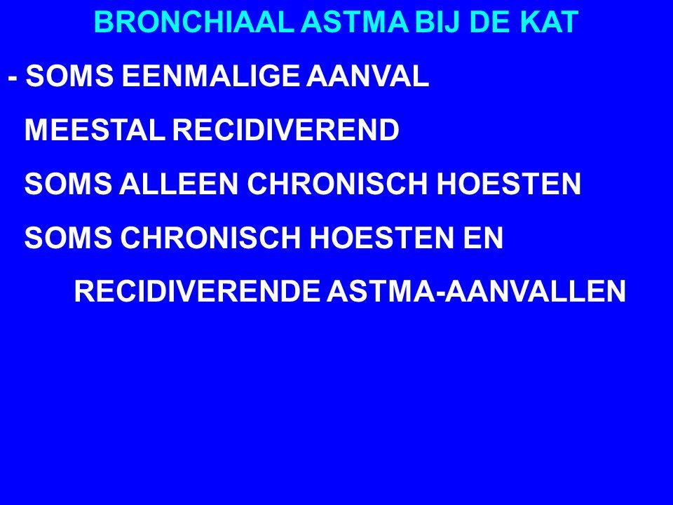 BRONCHIAAL ASTMA BIJ DE KAT - SOMS EENMALIGE AANVAL MEESTAL RECIDIVEREND SOMS ALLEEN CHRONISCH HOESTEN SOMS CHRONISCH HOESTEN EN RECIDIVERENDE ASTMA-AANVALLEN