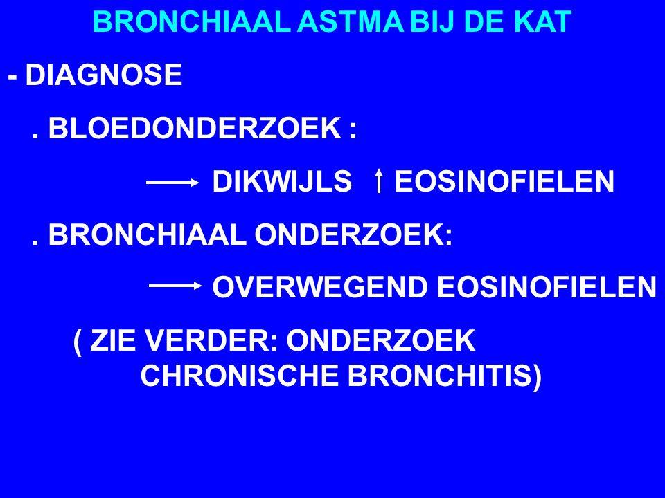 BRONCHIAAL ASTMA BIJ DE KAT - DIAGNOSE.BLOEDONDERZOEK : DIKWIJLS EOSINOFIELEN.