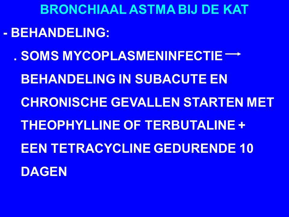 BRONCHIAAL ASTMA BIJ DE KAT - BEHANDELING:.
