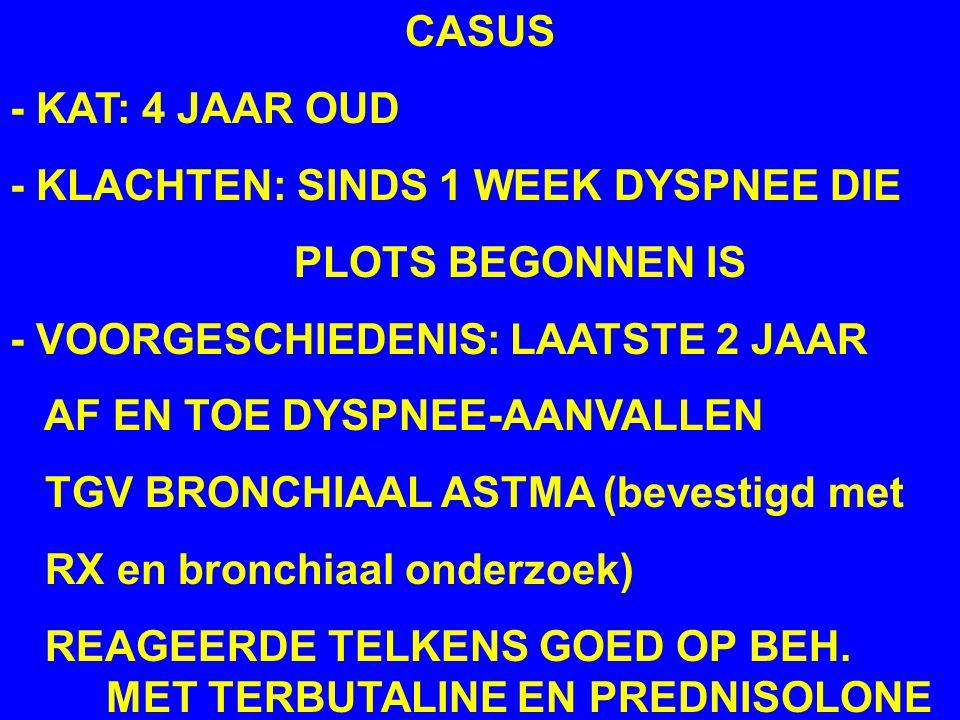 CASUS - KAT: 4 JAAR OUD - KLACHTEN: SINDS 1 WEEK DYSPNEE DIE PLOTS BEGONNEN IS - VOORGESCHIEDENIS: LAATSTE 2 JAAR AF EN TOE DYSPNEE-AANVALLEN TGV BRONCHIAAL ASTMA (bevestigd met RX en bronchiaal onderzoek) REAGEERDE TELKENS GOED OP BEH.