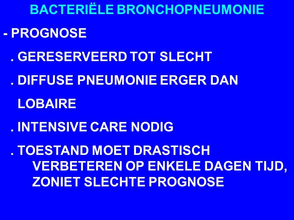 BACTERIËLE BRONCHOPNEUMONIE - PROGNOSE. GERESERVEERD TOT SLECHT. DIFFUSE PNEUMONIE ERGER DAN LOBAIRE. INTENSIVE CARE NODIG. TOESTAND MOET DRASTISCH VE