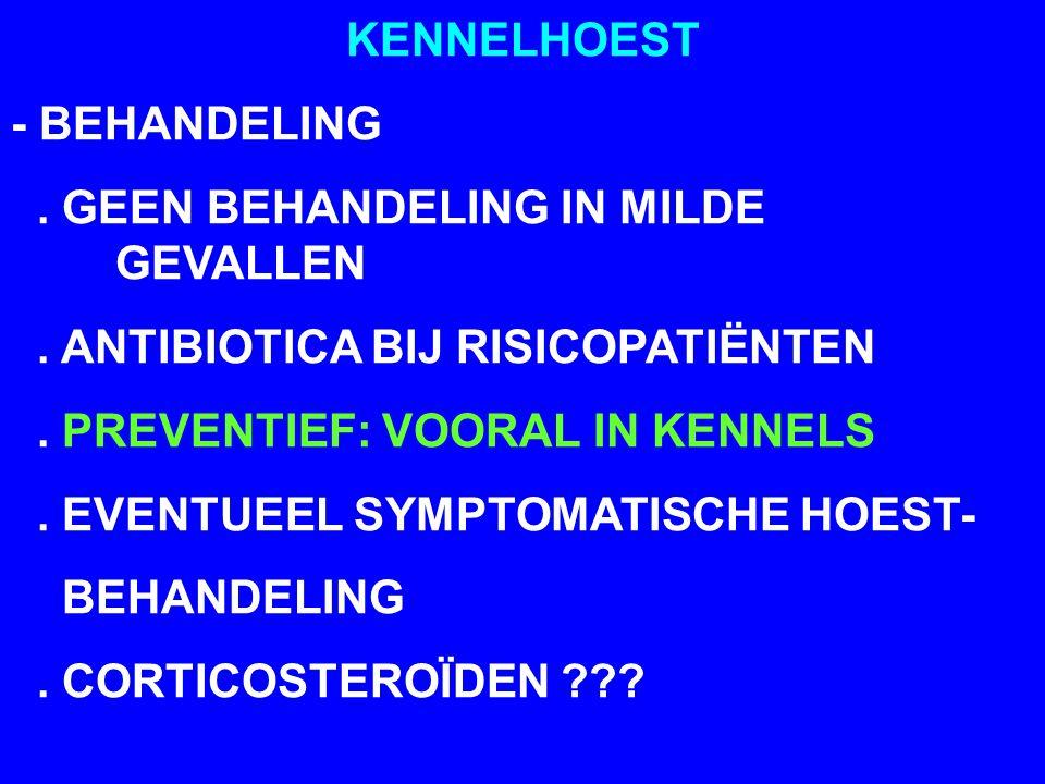 KENNELHOEST - BEHANDELING. GEEN BEHANDELING IN MILDE GEVALLEN. ANTIBIOTICA BIJ RISICOPATIËNTEN. PREVENTIEF: VOORAL IN KENNELS. EVENTUEEL SYMPTOMATISCH