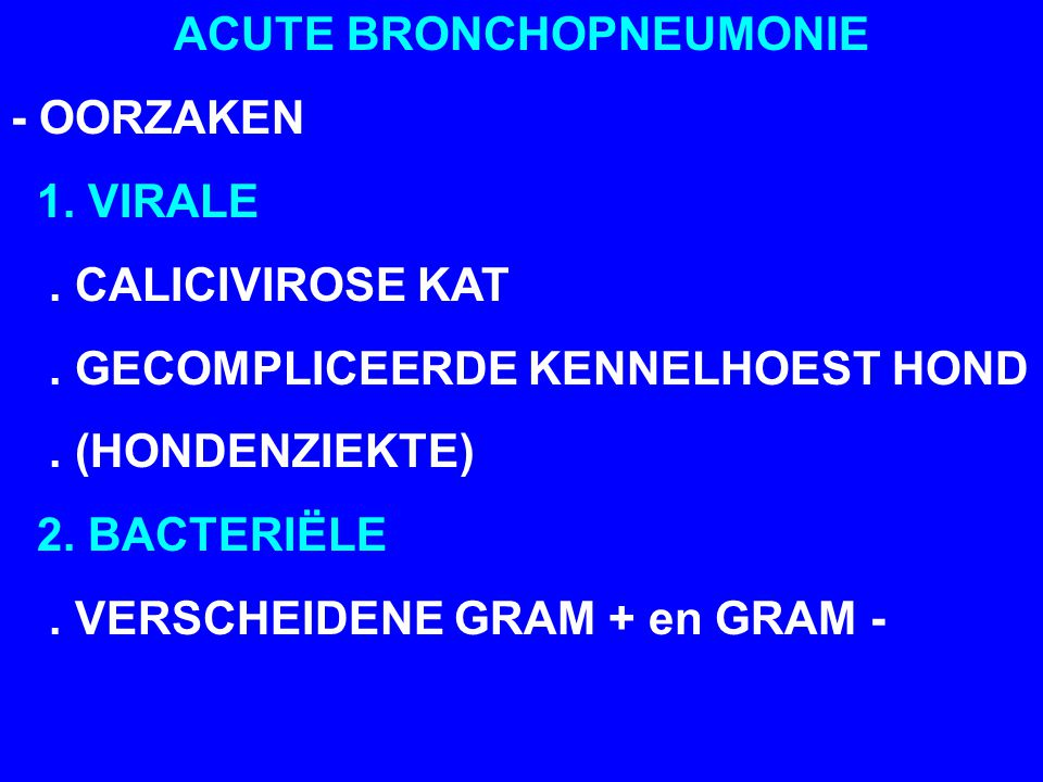 ACUTE BRONCHOPNEUMONIE - OORZAKEN 1. VIRALE. CALICIVIROSE KAT. GECOMPLICEERDE KENNELHOEST HOND. (HONDENZIEKTE) 2. BACTERIËLE. VERSCHEIDENE GRAM + en G