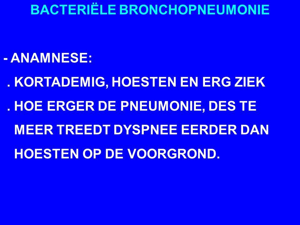 BACTERIËLE BRONCHOPNEUMONIE - DIAGNOSE: BELANGRIJKE STEUNPILAREN ZIJN:.