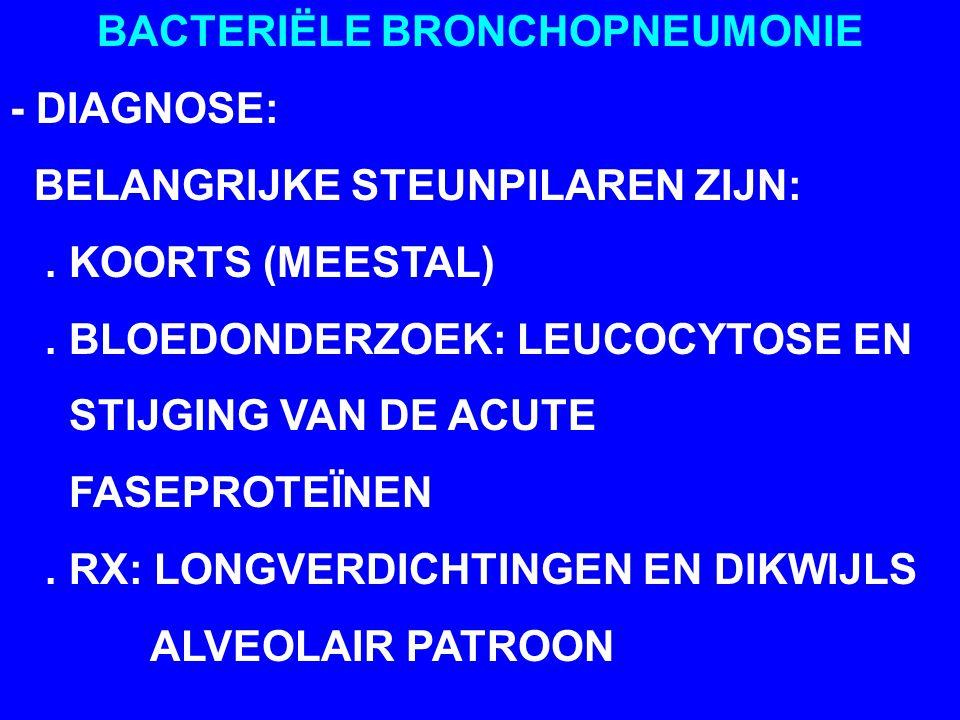 BACTERIËLE BRONCHOPNEUMONIE - DIAGNOSE: BELANGRIJKE STEUNPILAREN ZIJN:. KOORTS (MEESTAL). BLOEDONDERZOEK: LEUCOCYTOSE EN STIJGING VAN DE ACUTE FASEPRO
