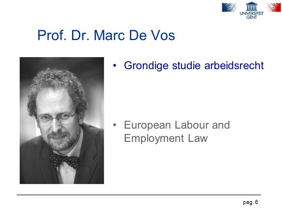 Prof. Dr. Marc De Vos Grondige studie arbeidsrecht European Labour and Employment Law pag. 6