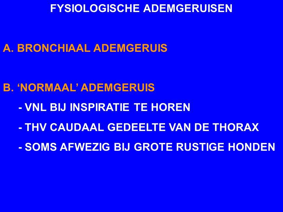 FYSIOLOGISCHE ADEMGERUISEN A. BRONCHIAAL ADEMGERUIS B. 'NORMAAL' ADEMGERUIS - VNL BIJ INSPIRATIE TE HOREN - THV CAUDAAL GEDEELTE VAN DE THORAX - SOMS