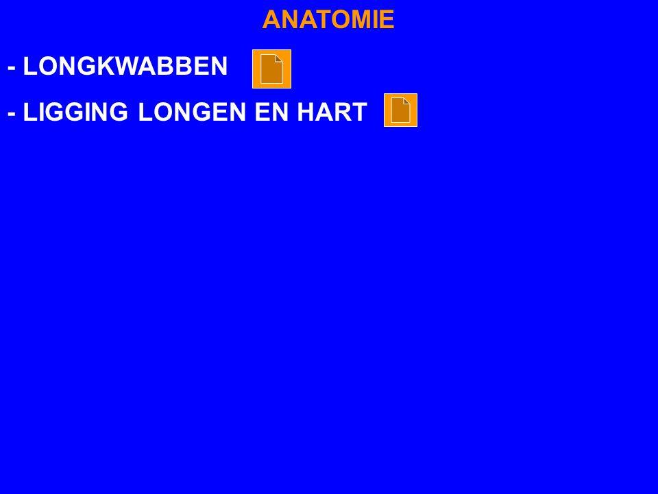 ANATOMIE - LONGKWABBEN - LIGGING LONGEN EN HART