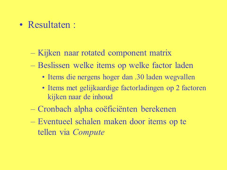 Resultaten : –Kijken naar rotated component matrix –Beslissen welke items op welke factor laden Items die nergens hoger dan.30 laden wegvallen Items met gelijkaardige factorladingen op 2 factoren kijken naar de inhoud –Cronbach alpha coëficiënten berekenen –Eventueel schalen maken door items op te tellen via Compute