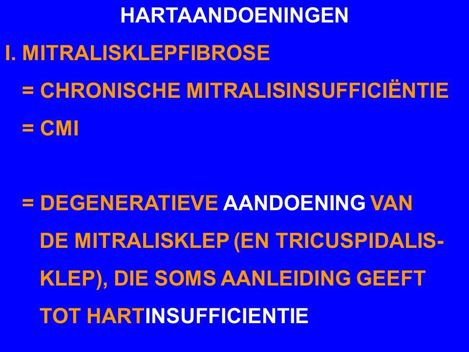 HARTAANDOENINGEN I. MITRALISKLEPFIBROSE = CHRONISCHE MITRALISINSUFFICIËNTIE = CMI = DEGENERATIEVE AANDOENING VAN DE MITRALISKLEP (EN TRICUSPIDALIS- KL