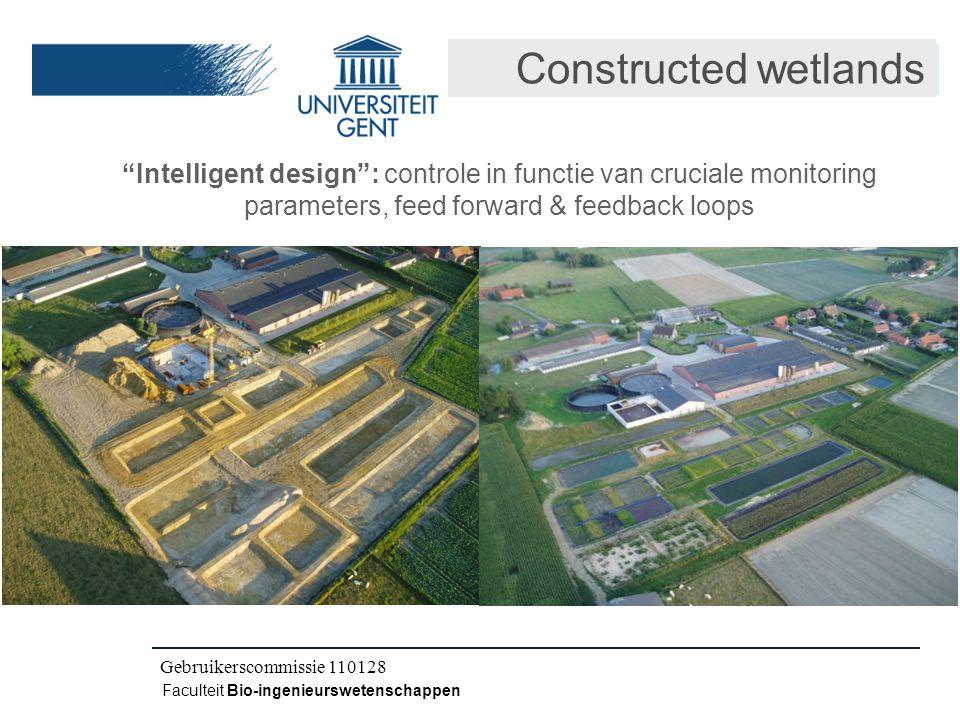 """Kick-off IWT CLO 080504 Faculteit Bio-ingenieurswetenschappen Constructed wetlands """"Intelligent design"""": controle in functie van cruciale monitoring p"""