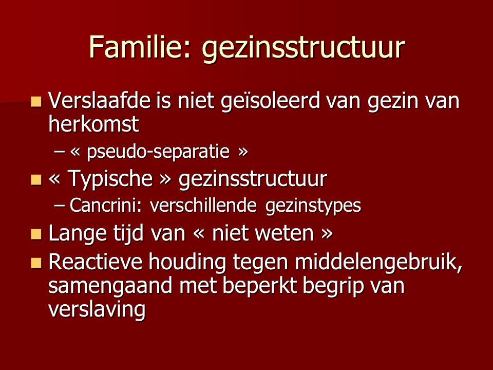 Familie: gezinsstructuur Verslaafde is niet geïsoleerd van gezin van herkomst Verslaafde is niet geïsoleerd van gezin van herkomst –« pseudo-separatie