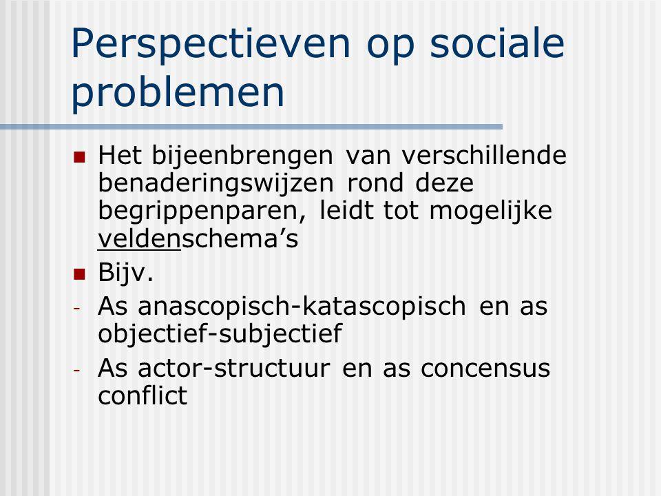 Perspectieven op sociale problemen Het bijeenbrengen van verschillende benaderingswijzen rond deze begrippenparen, leidt tot mogelijke veldenschema's Bijv.