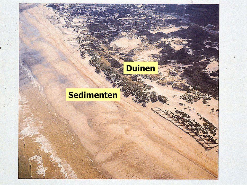 Duinen Sedimenten