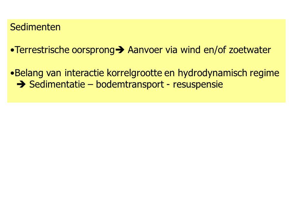 Sedimenten Terrestrische oorsprong  Aanvoer via wind en/of zoetwater Belang van interactie korrelgrootte en hydrodynamisch regime  Sedimentatie – bo