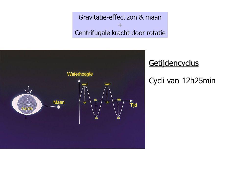 Getijdencyclus Cycli van 12h25min Gravitatie-effect zon & maan + Centrifugale kracht door rotatie