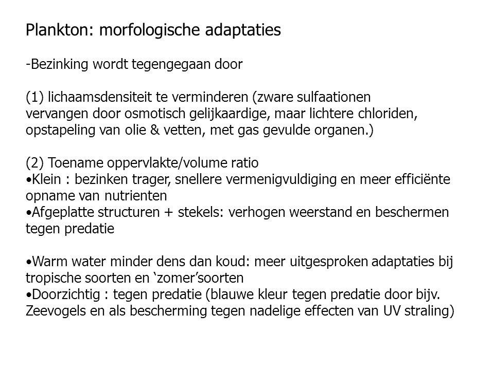 Plankton: morfologische adaptaties -Bezinking wordt tegengegaan door (1) lichaamsdensiteit te verminderen (zware sulfaationen vervangen door osmotisch