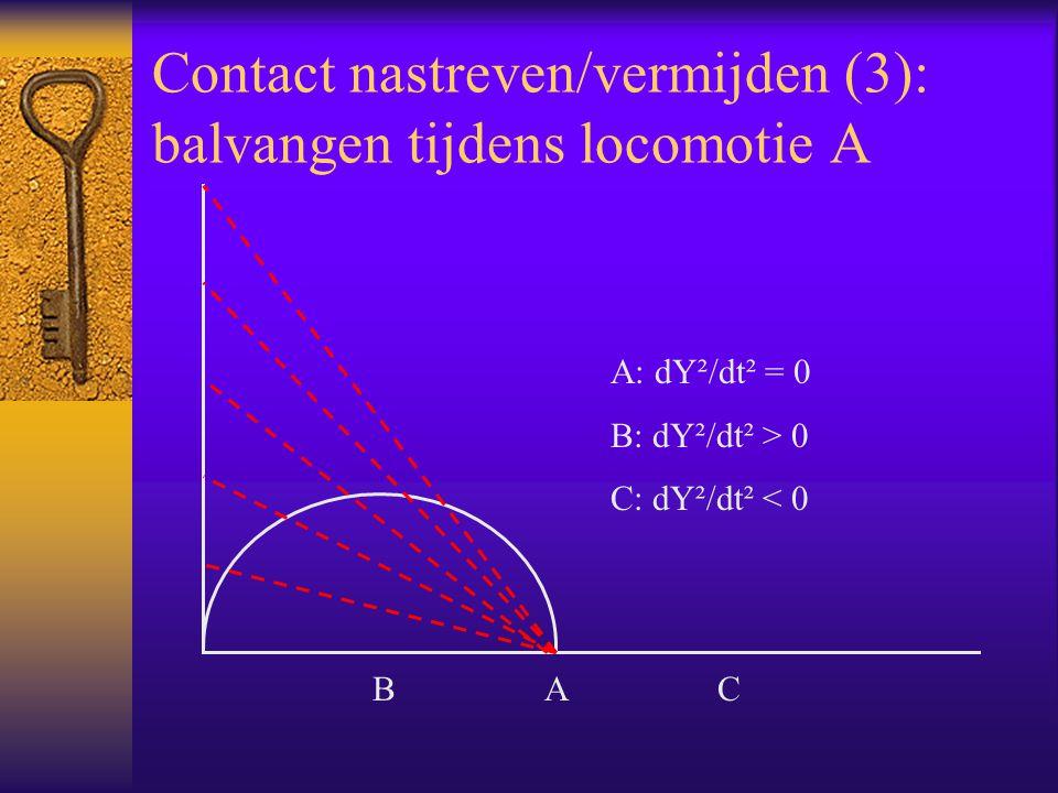 Contact nastreven/vermijden (3): balvangen tijdens locomotie A A: dY²/dt² = 0 B: dY²/dt² > 0 C: dY²/dt² < 0 B A C