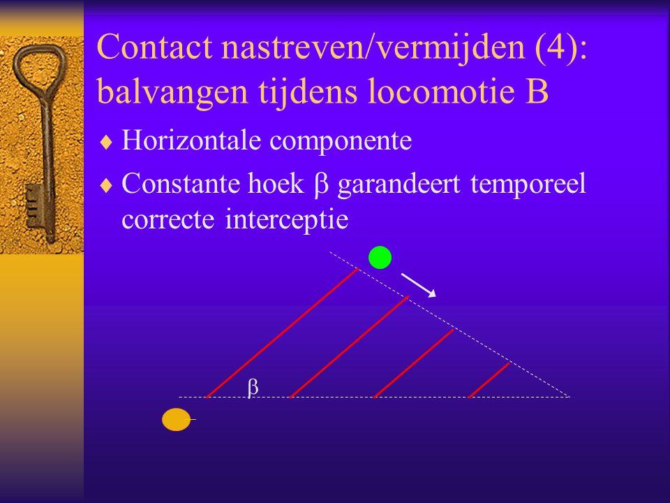 Contact nastreven/vermijden (4): balvangen tijdens locomotie B  Horizontale componente  Constante hoek  garandeert temporeel correcte interceptie 
