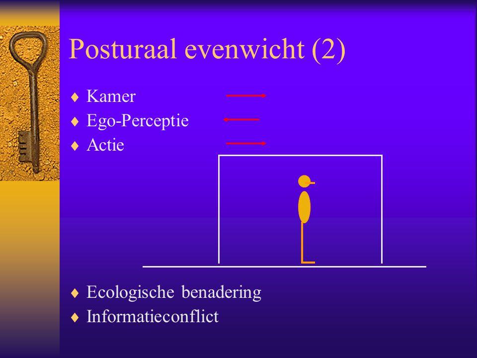 Posturaal evenwicht (2)  Kamer  Ego-Perceptie  Actie  Ecologische benadering  Informatieconflict