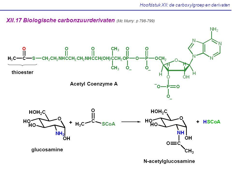 Hoofdstuk XII: de carboxylgroep en derivaten XII.17 Biologische carbonzuurderivaten (Mc Murry: p 798-799) Acetyl Coenzyme A thioester glucosamine N-acetylglucosamine