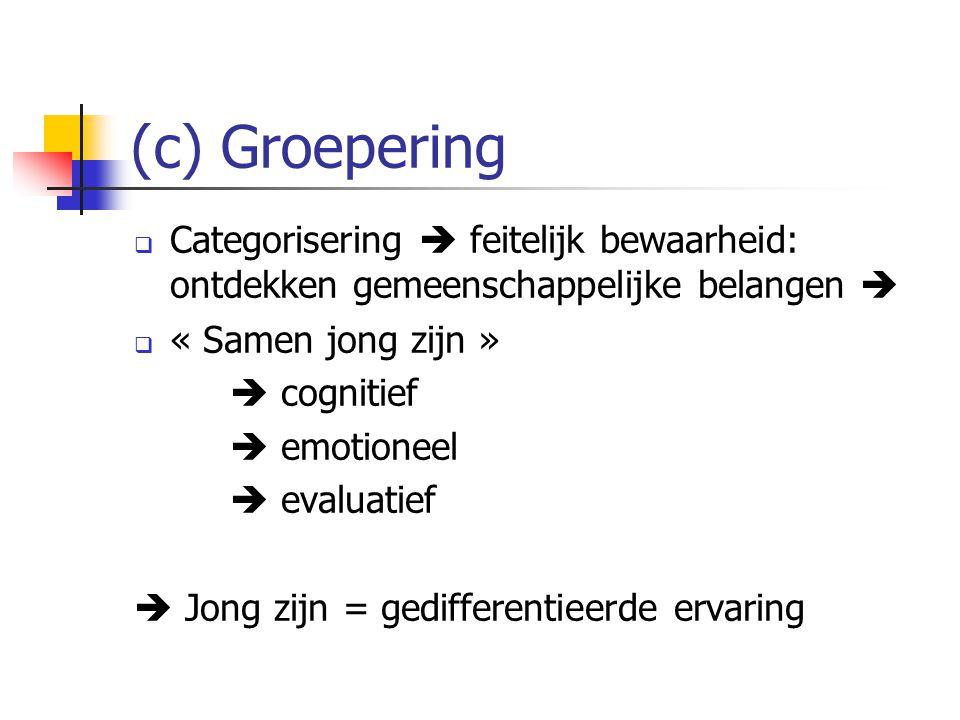 (c) Groepering  Categorisering  feitelijk bewaarheid: ontdekken gemeenschappelijke belangen   « Samen jong zijn »  cognitief  emotioneel  evalu