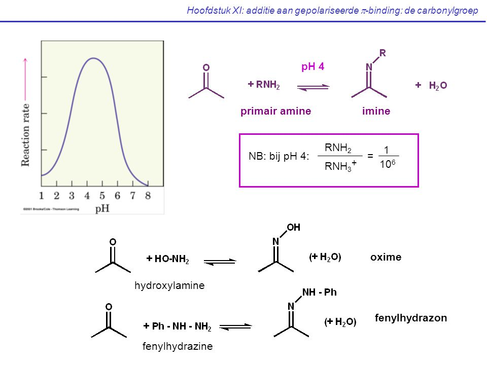 Hoofdstuk XI: additie aan gepolariseerde  -binding: de carbonylgroep primair amineimine pH 4 NB: bij pH 4: = RNH 2 RNH 3 + 1 10 6 oxime fenylhydrazon hydroxylamine fenylhydrazine