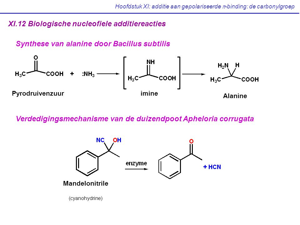 Hoofdstuk XI: additie aan gepolariseerde  -binding: de carbonylgroep XI.12 Biologische nucleofiele additiereacties imine Alanine Pyrodruivenzuur Synthese van alanine door Bacillus subtilis Verdedigingsmechanisme van de duizendpoot Apheloria corrugata Mandelonitrile (cyanohydrine)