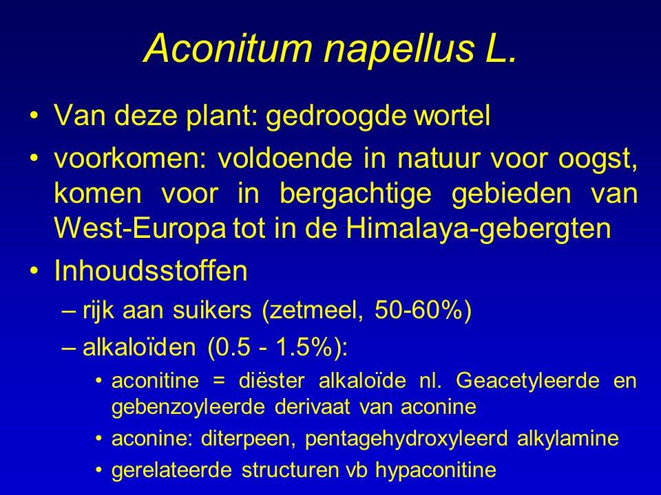 Aconitum napellus L. Van deze plant: gedroogde wortel voorkomen: voldoende in natuur voor oogst, komen voor in bergachtige gebieden van West-Europa to