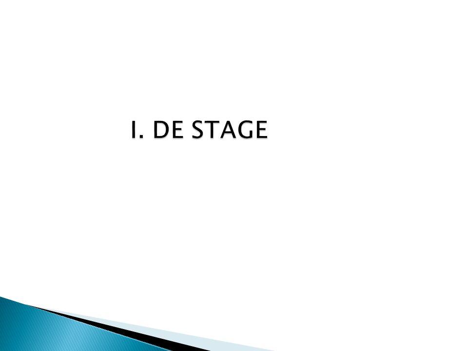 I. DE STAGE