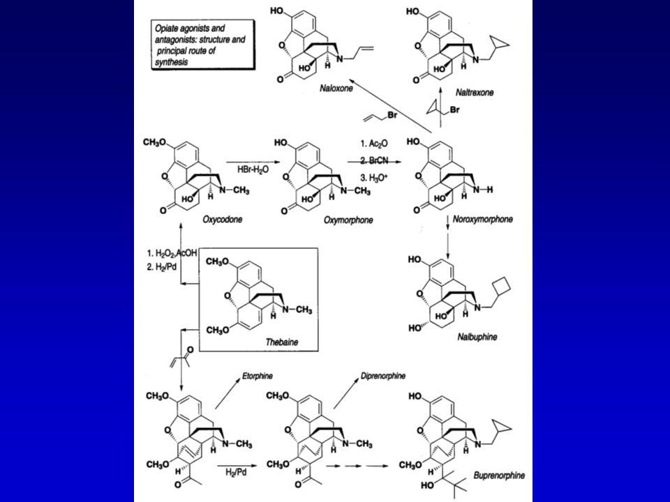 Semi-synthetische derivaten Naloxone = zuivere antagonist, doet effect van heroine teniet, gaat respiratoire depressie bij intoxicatie –wordt ook toegevoegd aan pentazocine tabletten (verhinderd misbruik door injectie) Buprenorfine = agonist-antagonist, bindt reversiebel op de receptoren waardoor verlangen naar drug geminimaliseerd wordt