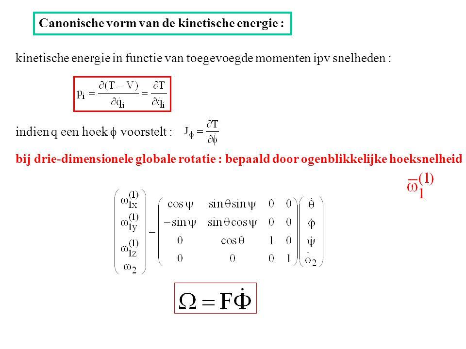 Canonische vorm van de kinetische energie : kinetische energie in functie van toegevoegde momenten ipv snelheden : indien q een hoek  voorstelt : bij drie-dimensionele globale rotatie : bepaald door ogenblikkelijke hoeksnelheid