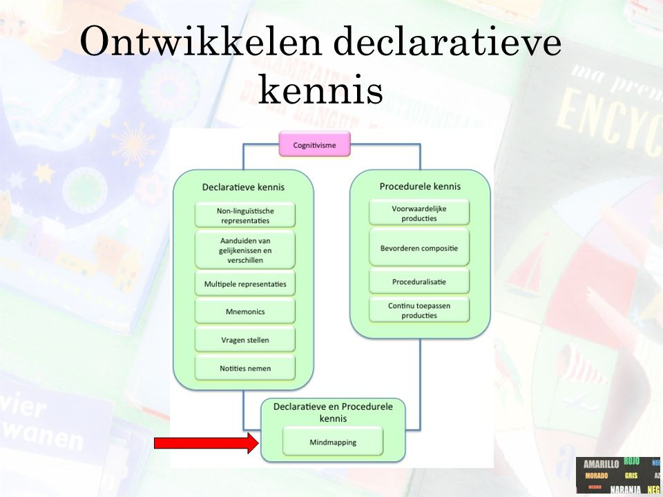 Ontwikkelen declaratieve kennis