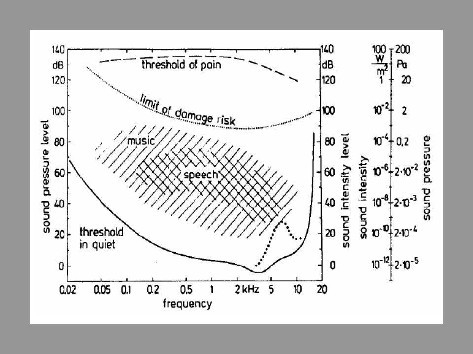 Frequentiebereik Menselijk gehoor –Lage frequenties: 20 – 200 Hz –Midden frequenties: 200 – 5000 Hz –Hoge frequenties: 5000 – 20000 Hz Infrasound: ond