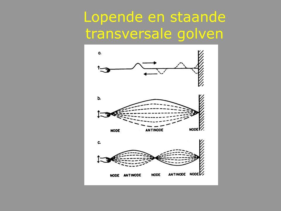 Transversale golven loodrechte verplaatsing Wavemotion Lopende transversale golf (LTG) Staande transversale golven (STG)