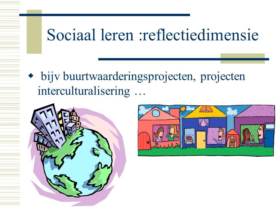Sociaal leren :reflectiedimensie  bijv buurtwaarderingsprojecten, projecten interculturalisering …