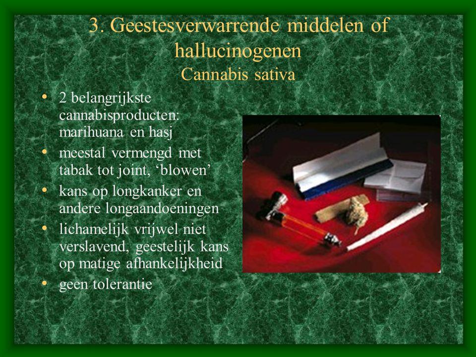 3. Geestesverwarrende middelen of hallucinogenen Cannabis sativa 2 belangrijkste cannabisproducten: marihuana en hasj meestal vermengd met tabak tot j