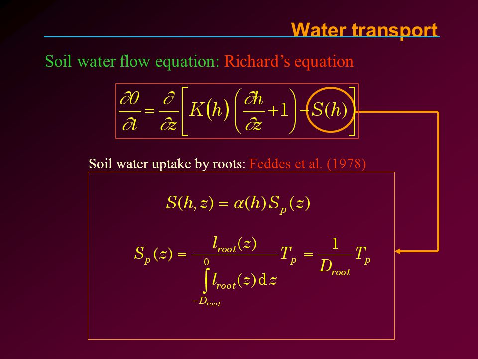 Soil water flow equation: Richard's equation Soil water uptake by roots: Feddes et al.
