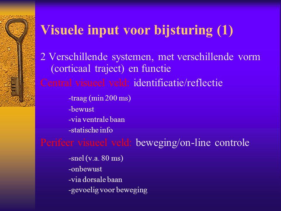 Visuele input voor bijsturing (1) 2 Verschillende systemen, met verschillende vorm (corticaal traject) en functie Central visueel veld: identificatie/