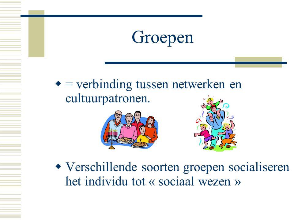 Groepen  = verbinding tussen netwerken en cultuurpatronen.