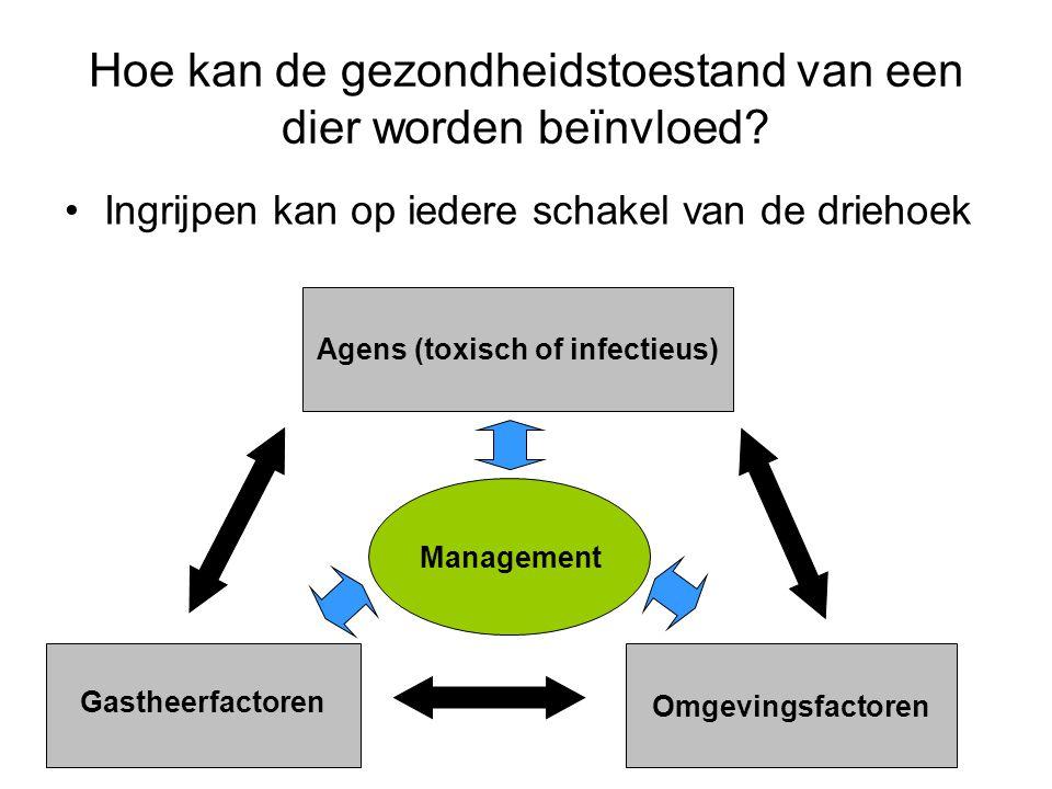 Hoe kan de gezondheidstoestand van een dier worden beïnvloed? Ingrijpen kan op iedere schakel van de driehoek Agens (toxisch of infectieus) Omgevingsf