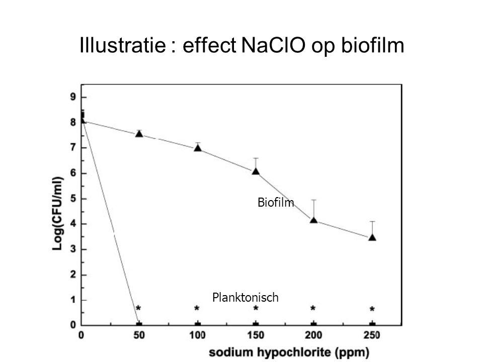 Illustratie : effect NaClO op biofilm Biofilm Planktonisch