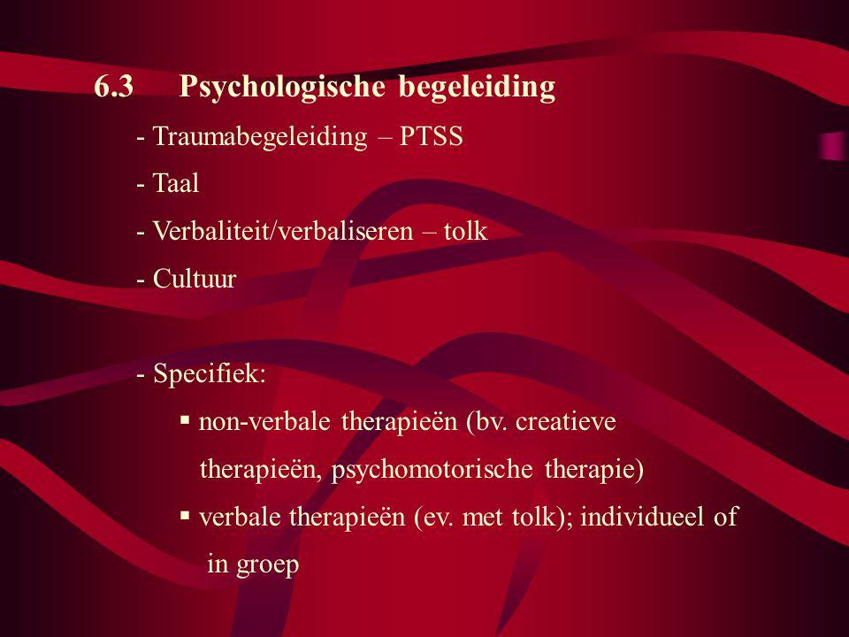 6.3 Psychologische begeleiding - Traumabegeleiding – PTSS - Taal - Verbaliteit/verbaliseren – tolk - Cultuur - Specifiek:  non-verbale therapieën (bv.