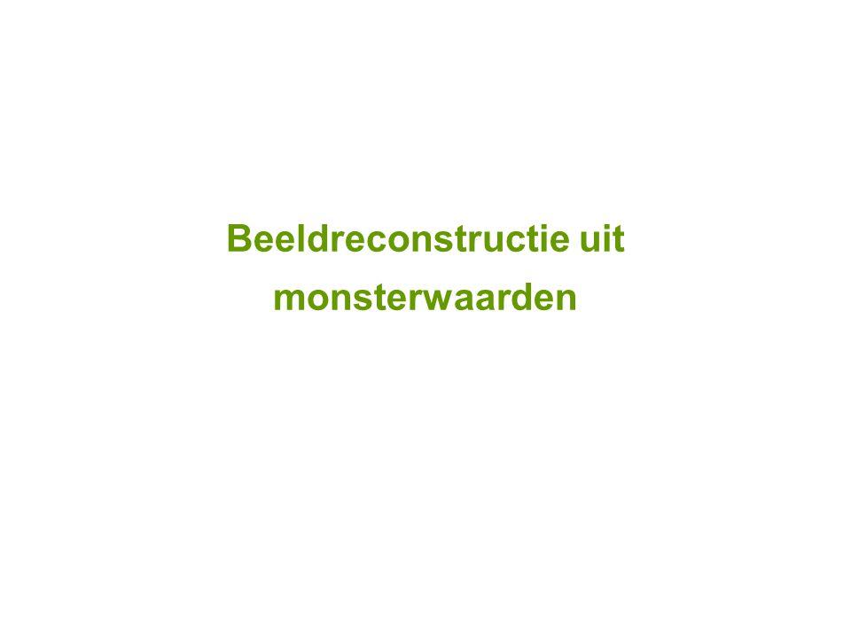 Beeldreconstructie uit monsterwaarden