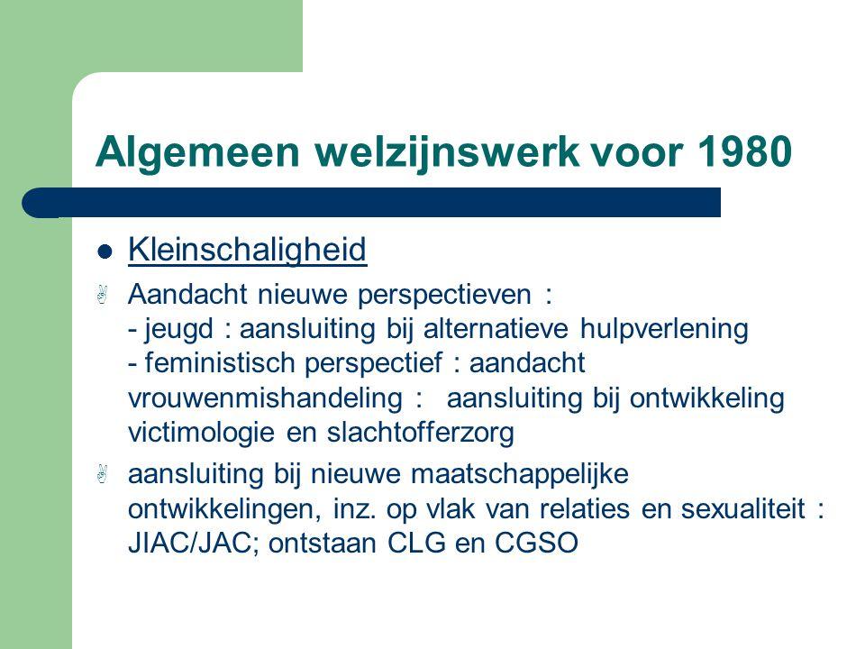 Algemeen welzijnswerk voor 1980 Kleinschaligheid A Aandacht nieuwe perspectieven : - jeugd : aansluiting bij alternatieve hulpverlening - feministisch