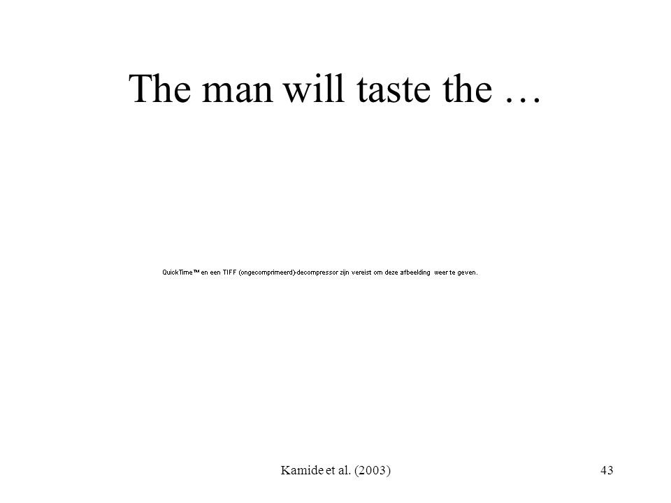 Kamide et al. (2003)43 The man will taste the …
