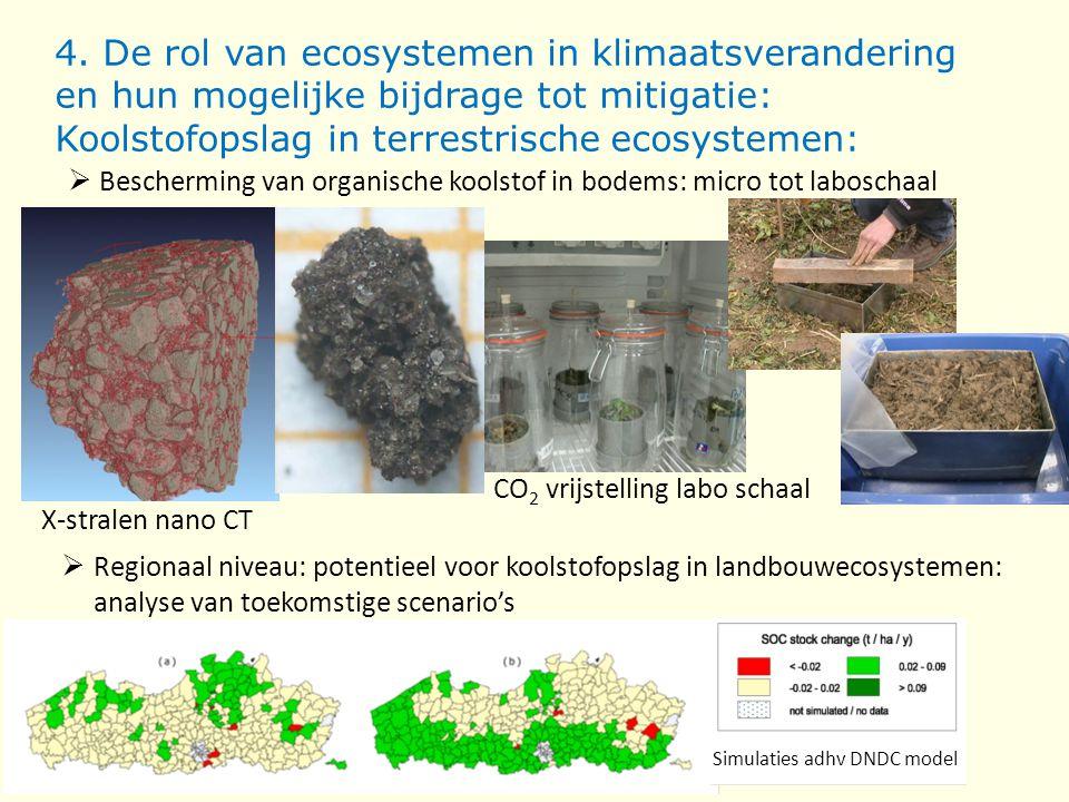 4. De rol van ecosystemen in klimaatsverandering en hun mogelijke bijdrage tot mitigatie: Koolstofopslag in terrestrische ecosystemen: X-stralen nano