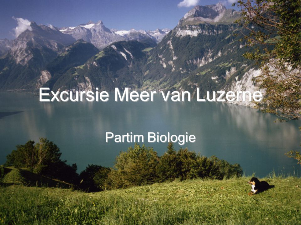 Excursie Meer van Luzerne Partim Biologie