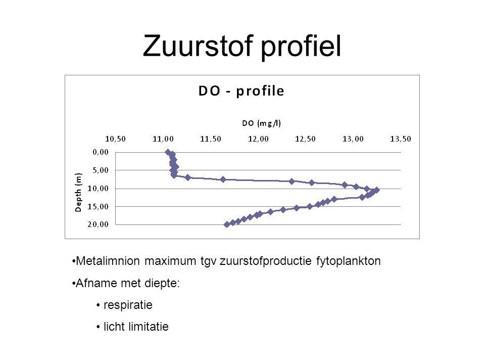 Zuurstof profiel Metalimnion maximum tgv zuurstofproductie fytoplankton Afname met diepte: respiratie licht limitatie