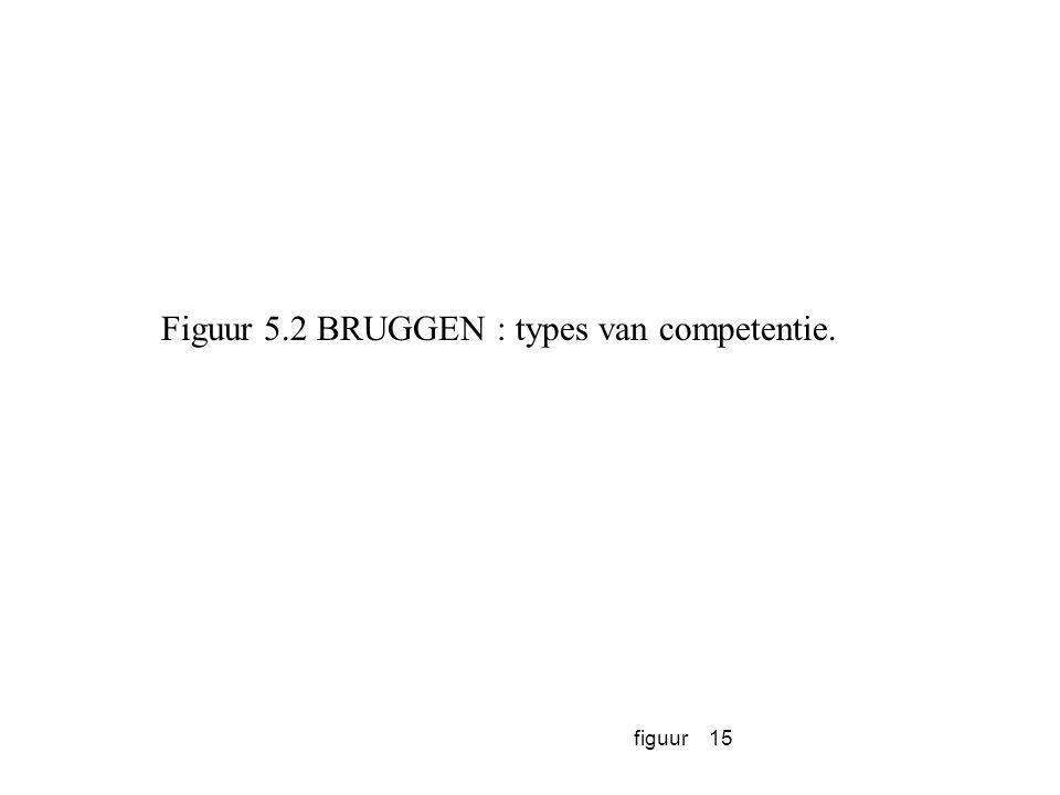 figuur15 Figuur 5.2 BRUGGEN : types van competentie.